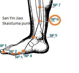 san yin jiao  spleen meridian 6 point valid for relaxing