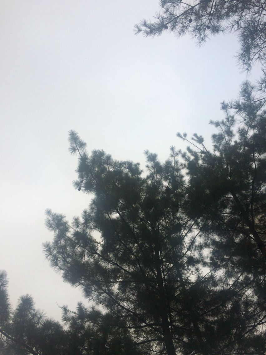 2016년 4월 9일의 하늘 #sky #cloud