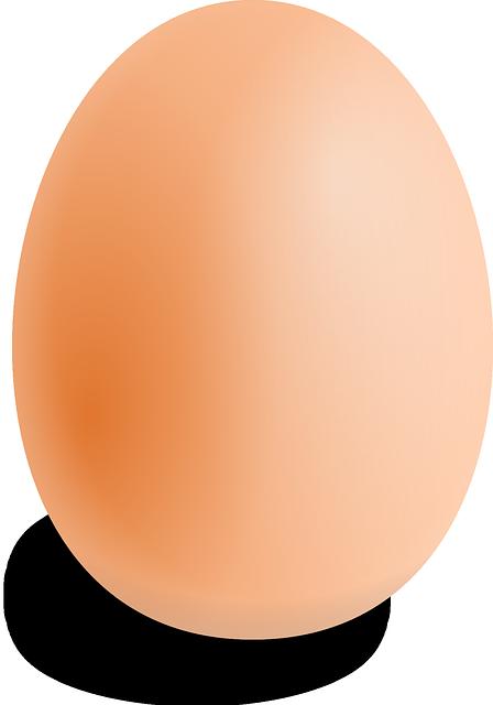 Free Image on Pixabay - Egg, Oval, Food, Round