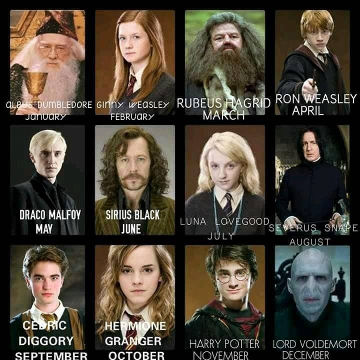 Your Birth Month Will Decide Which Harry Potter Character Are You Shreya Ravenclaw Hagrid Always Harry Potter Characters Harry Potter Harry Potter Jokes