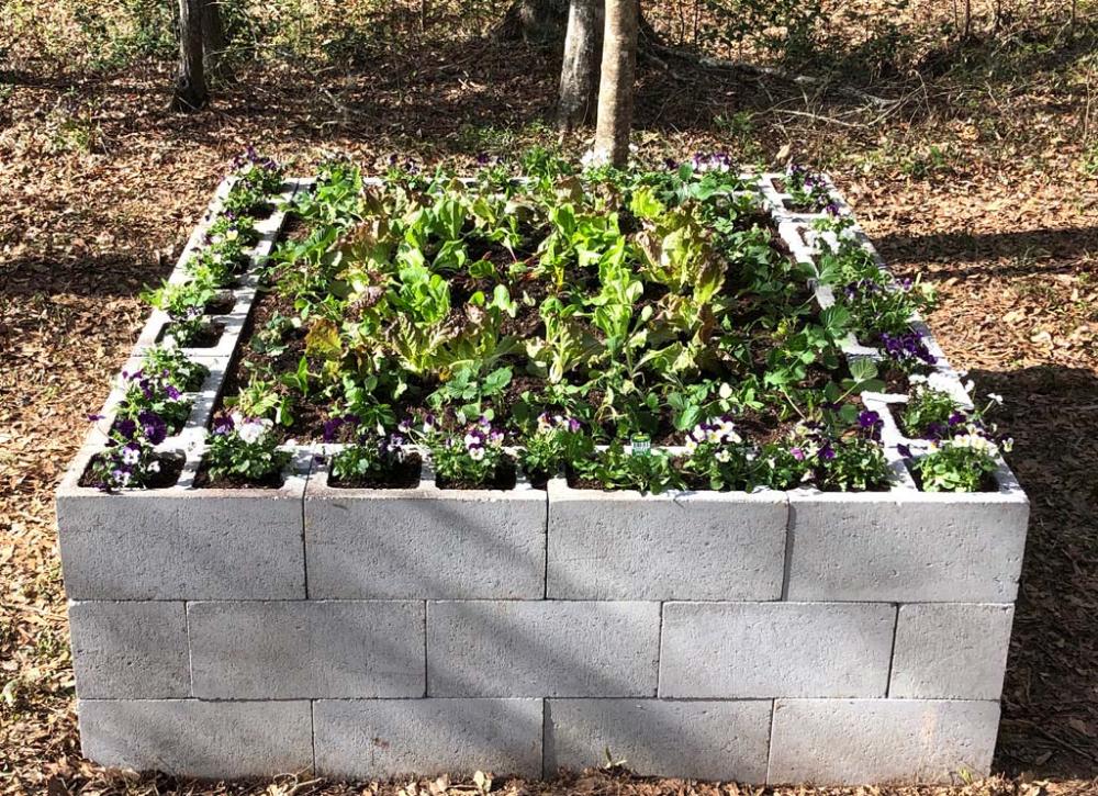 Super Simple Concrete Block Garden | Concrete garden, Diy ...