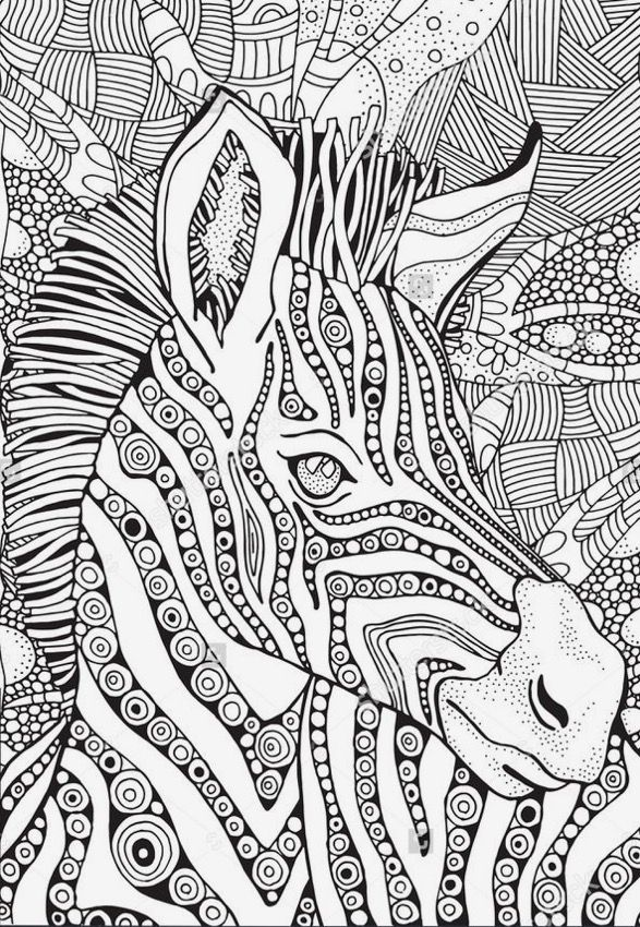 Zebra In Zentangle Style Coloring Page Doodle Hand Drawn Zebra