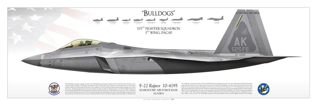 """UNITED STATES AIR FORCE525TH FIGHTER SQUADRON """"Bulldogs""""3RD WING, PACAFElmendorf Air Force Base, Alaska"""
