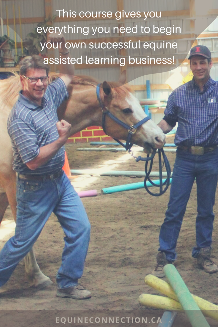 The Training Never Ends With Your One Time Investment The Business Package You Receive With Your Course Animal Rescue Center Best Books To Read Equine Therapy