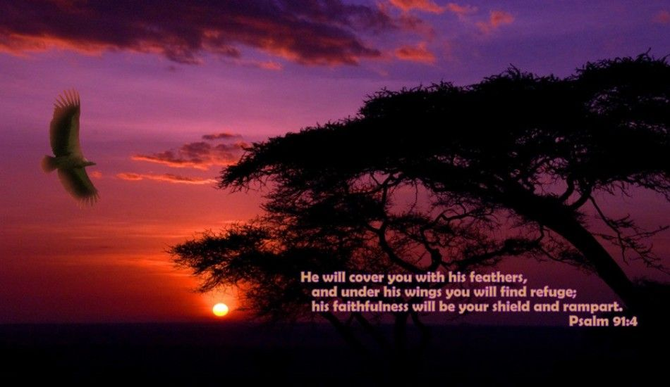 Hq Christian Wallpapers Free Download High Quality Bible Verse Wallpapers Download African Sunset Sunset National Parks