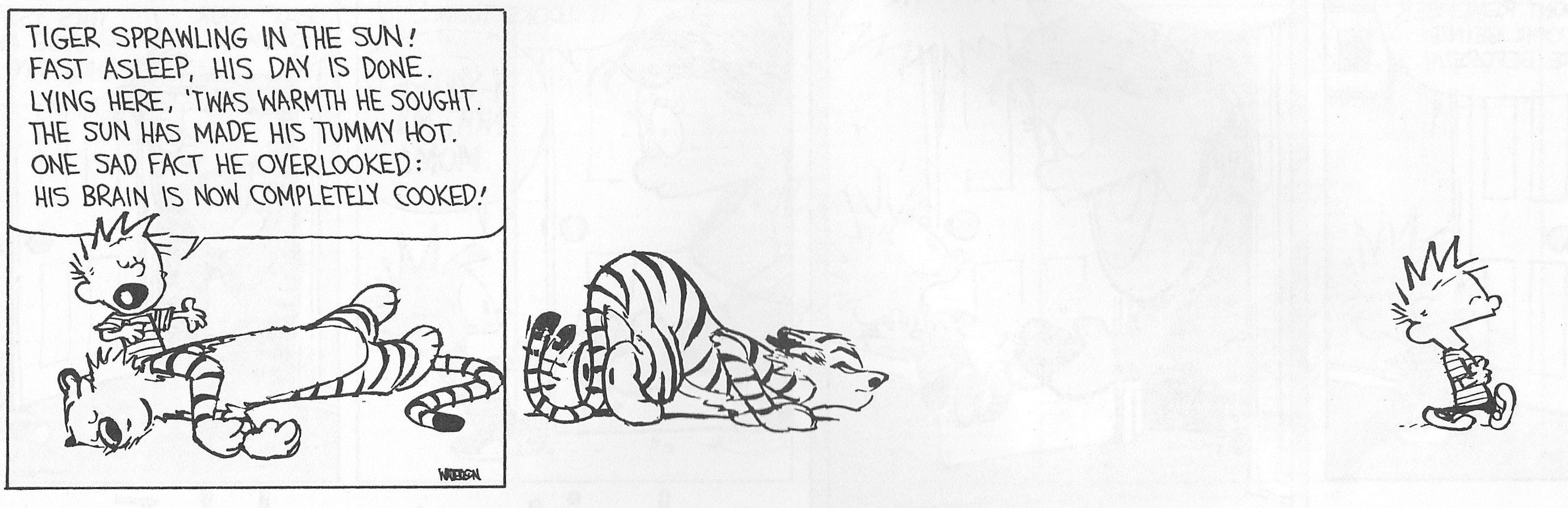 Calvin And Hobbes By Bill Watterson Calvin And Hobbes By Bill