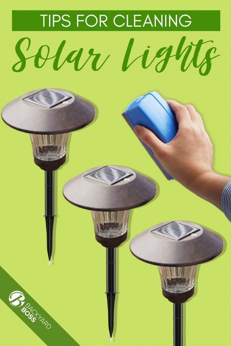 Tips for Cleaning Solar Lights Solar lights, Backyard