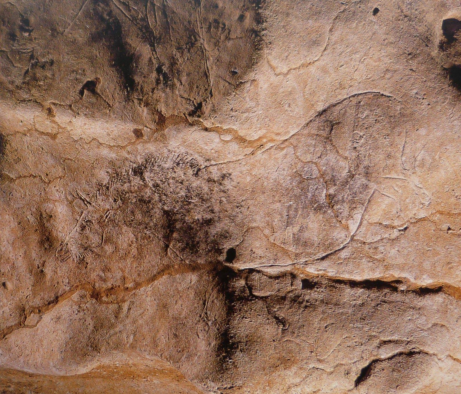 Peintures pariétales de Lascaux - Lascaux cave paintings   Preistoria