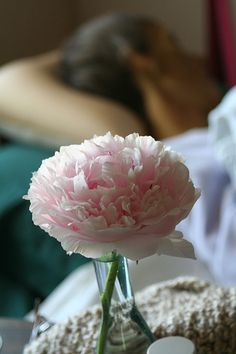 How to Transplant Peony Bushes | Garden Guides.  They are so pretty and smell nice, but they are pollinated by ANTS!!! so I can't deal with them being right next to my house.