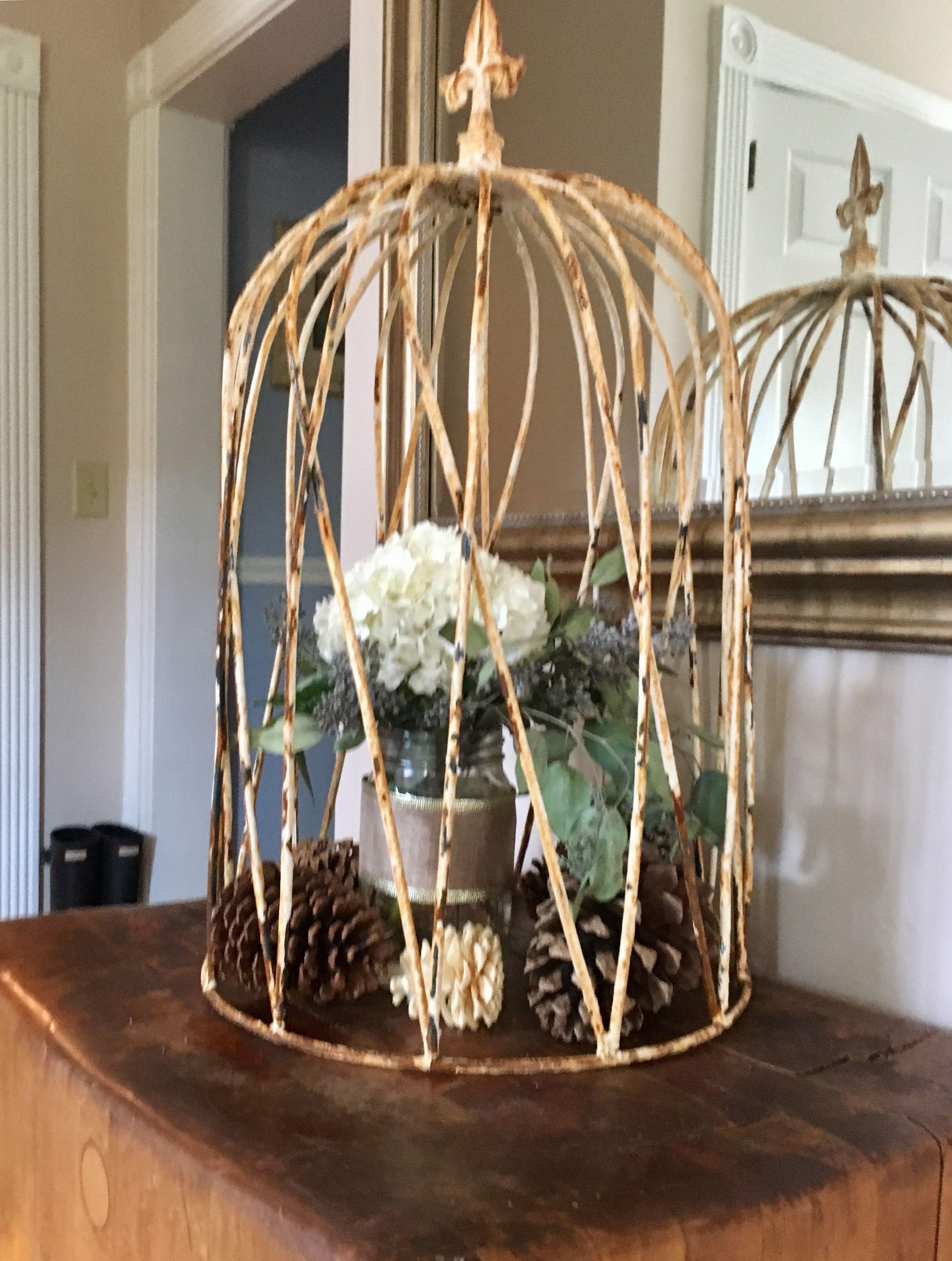 Wrought Iron Dome Cloche! Prefect for gardens, flowers, fall decor ...