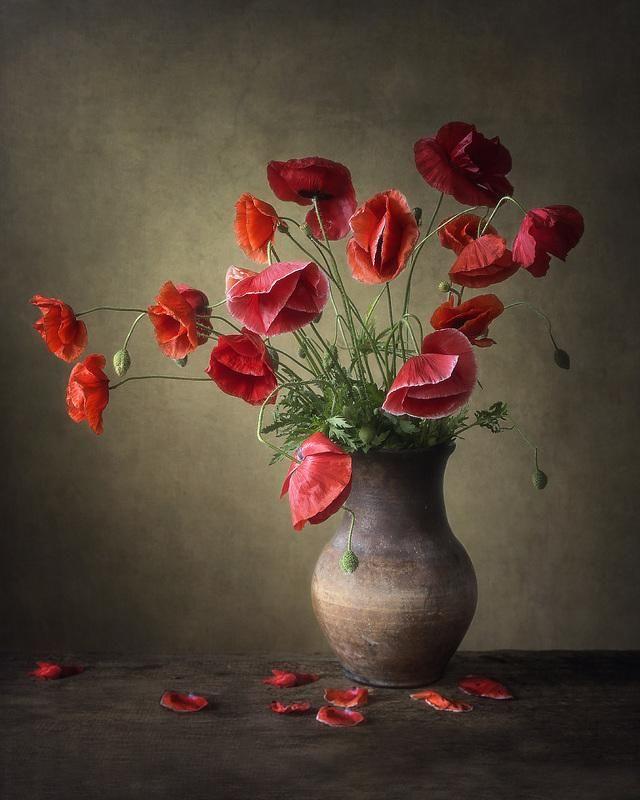 маленького художественное фото цветка уверены, когда будет