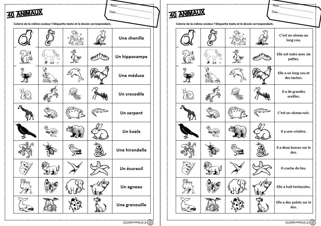 40 Animaux Exercices Lecture Ce1 Lecture Lecture De Mots