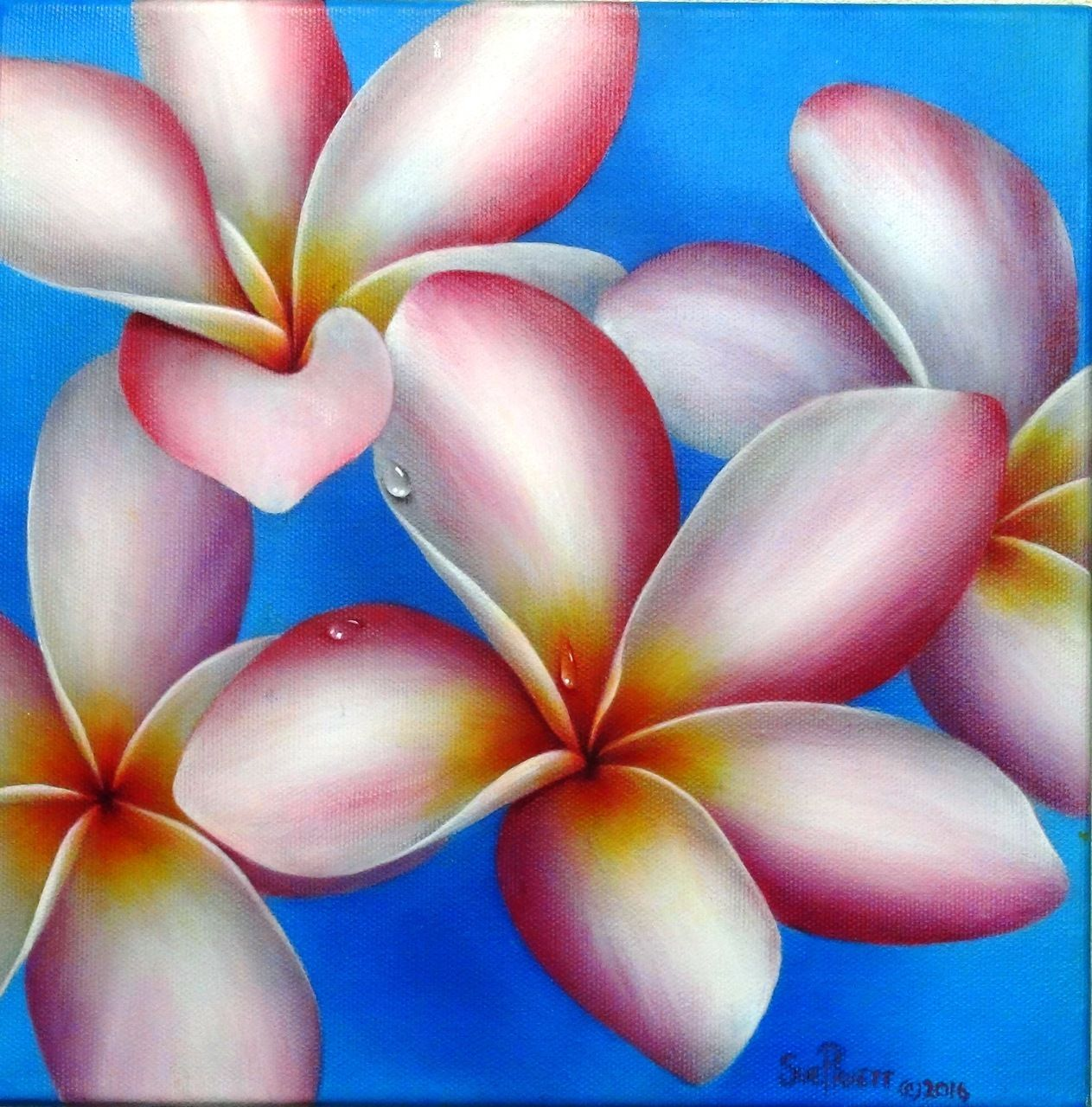 E Painting Pattern With Video Hawaiian Plumeria Flowers By Sue Pruett Flower Painting Painting Patterns Floral Painting