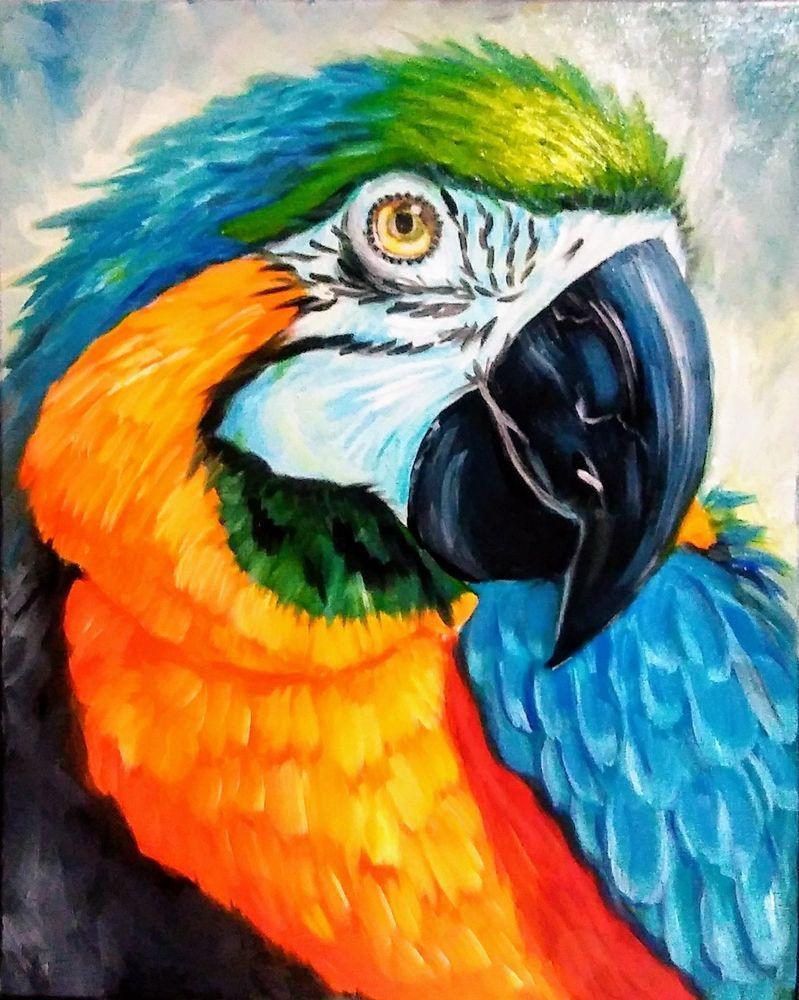 Yvette Andino Artl Oil Painting Blue N Orange Macaw Parrot 20x16