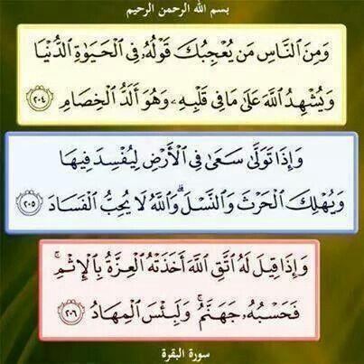 ايات من سورة البقرة Quran Verses Novelty Sign Holy Quran