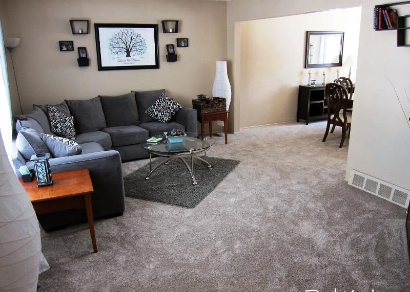 Home Depot Carpet Installation Reviews (With images