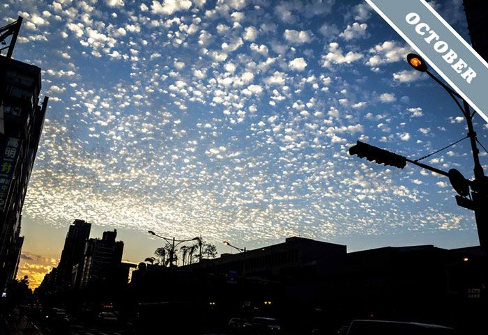 October 2015 Cloud of the Month photographed by Po-wan Ko over Taipei, Taiwan: A striking arrangements of 'cloudlets' in a layer of Altocumulus cloud.
