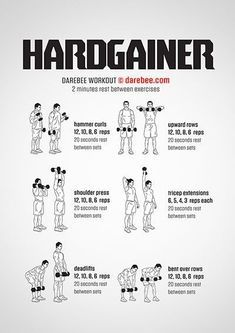 hardgainer workout  dumbbell workout weight training