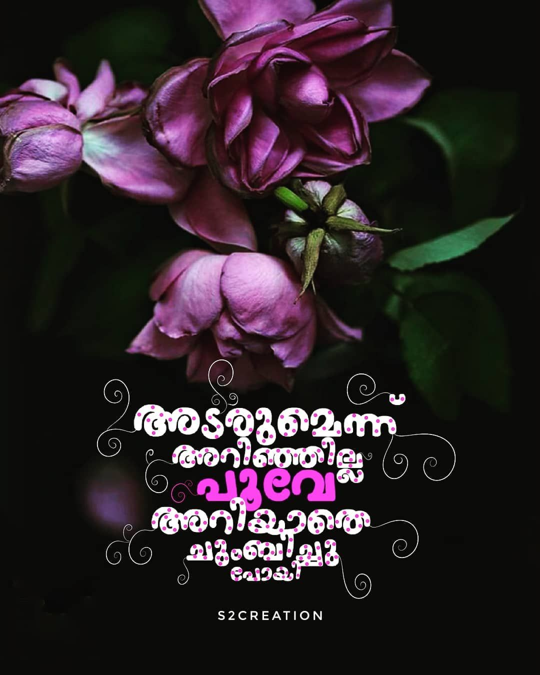 Pin by Joel Sam Joseph on ഇതളുകൾ (With images) Malayalam