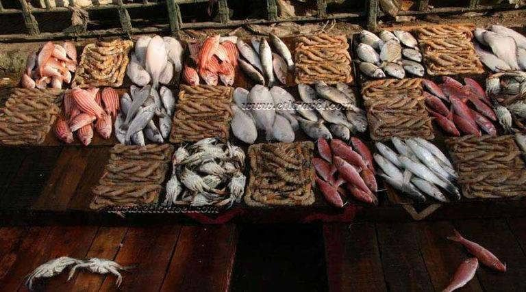 Anfushi Fish Market Alexandria Alexandria egypt