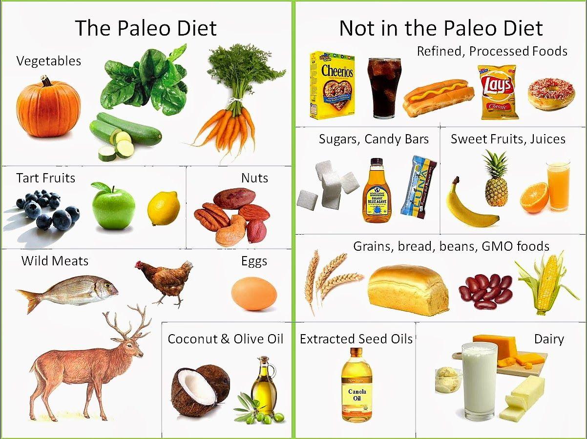 dieta paleolitica crossfit