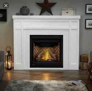 Napoleon And Superior Fireplaces Priced To Save Zero Clearance