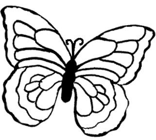 Chocolate butterfly pattern