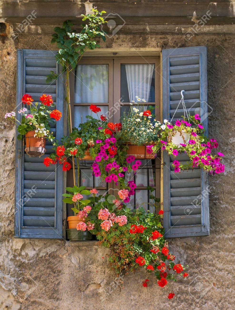 Vintage ventana con contraventanas de madera abiertas y flores ...