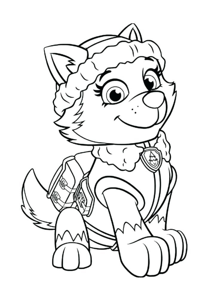 coloriage nickelodeon pat a coloriage pat patrouille