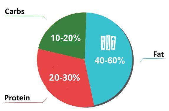 Low Carb Pie Chart For Type 2 Diabetes Diabetes Meal Plans