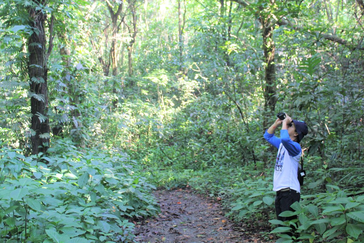 Great morning exercise: Birdwatching at the La Mesa Ecopark