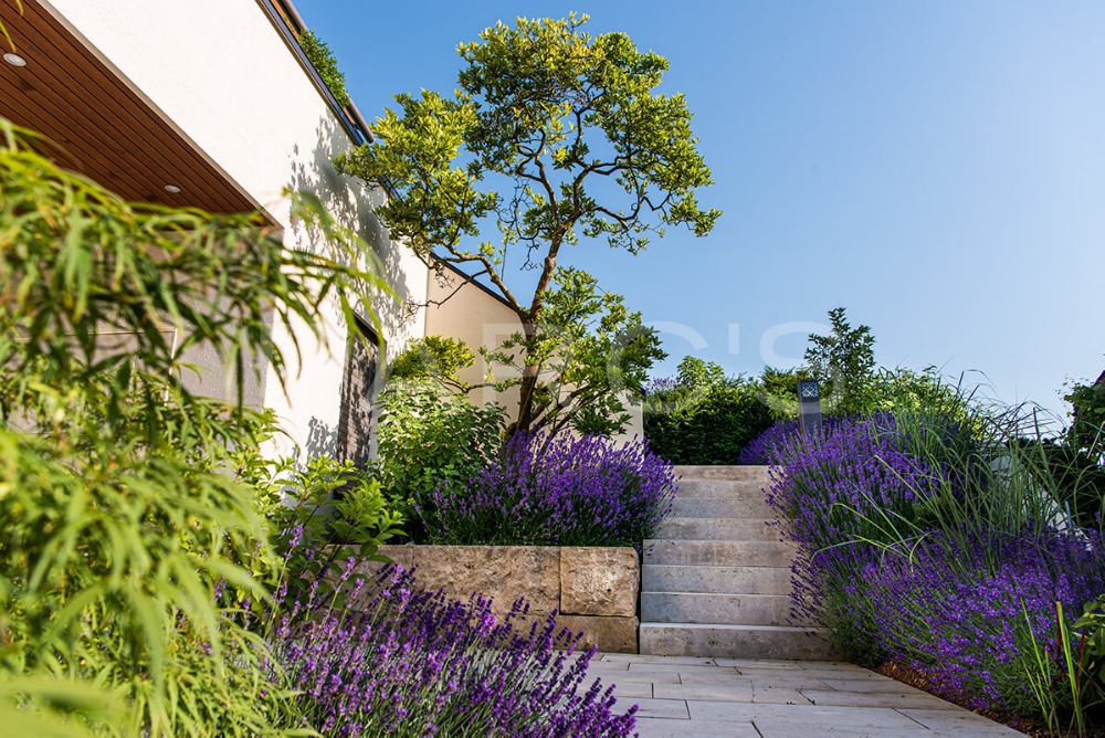 Blick auf das Schloss Rapperswil | Garteninspiration | PARC'S