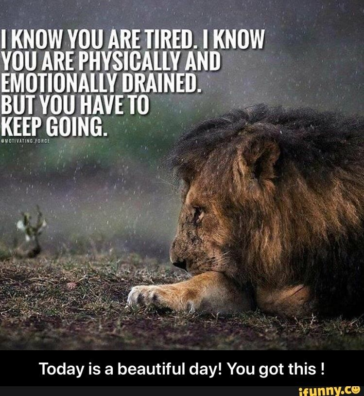 Today Is A Beautiful Day You Got This Ifunny Inspirational Quotes Motivation I Love You Quotes For Him Love You Quotes For Him