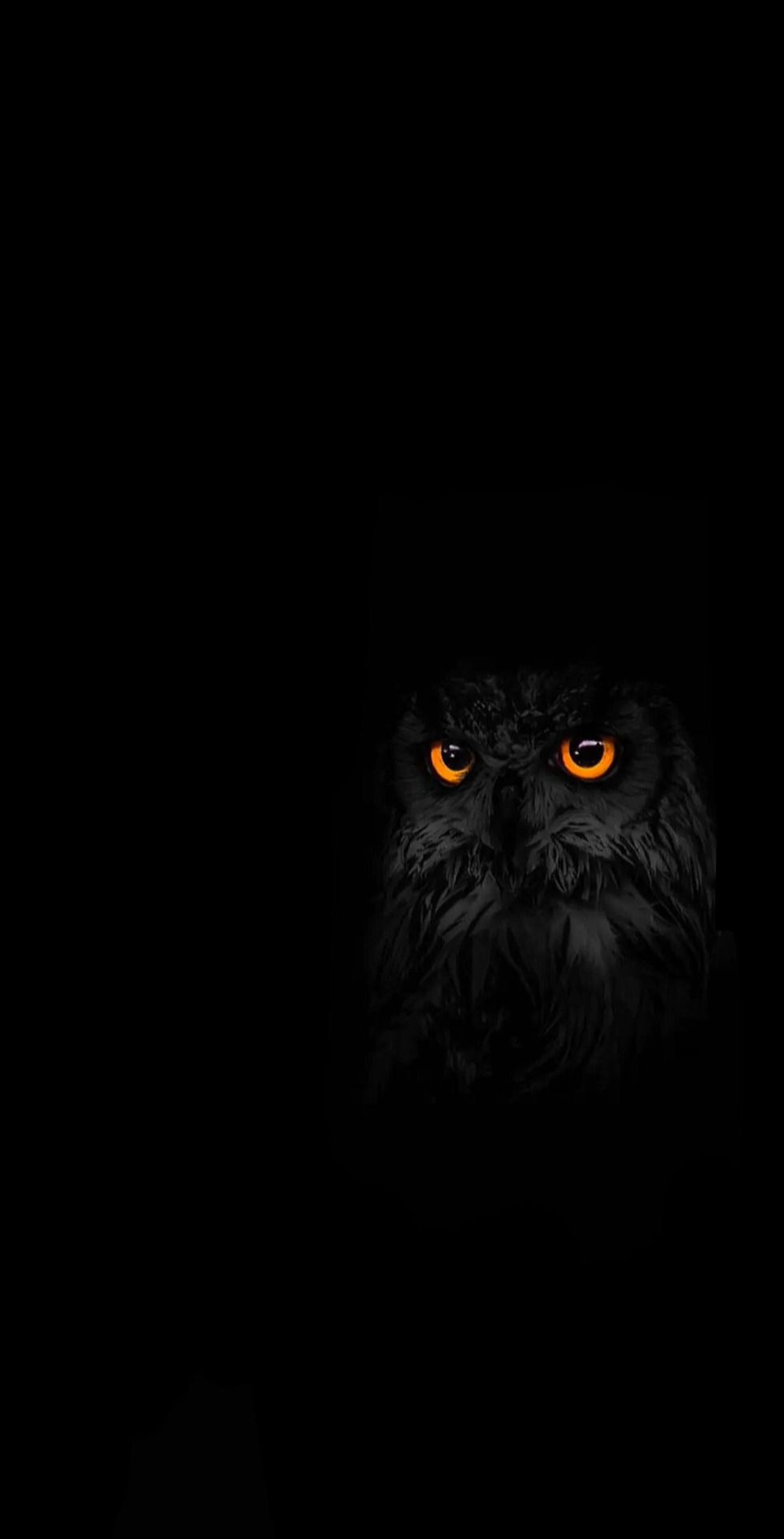 Pin By Vad On Animals Friends Owl Artwork Owl Wallpaper Owl Wallpaper Iphone