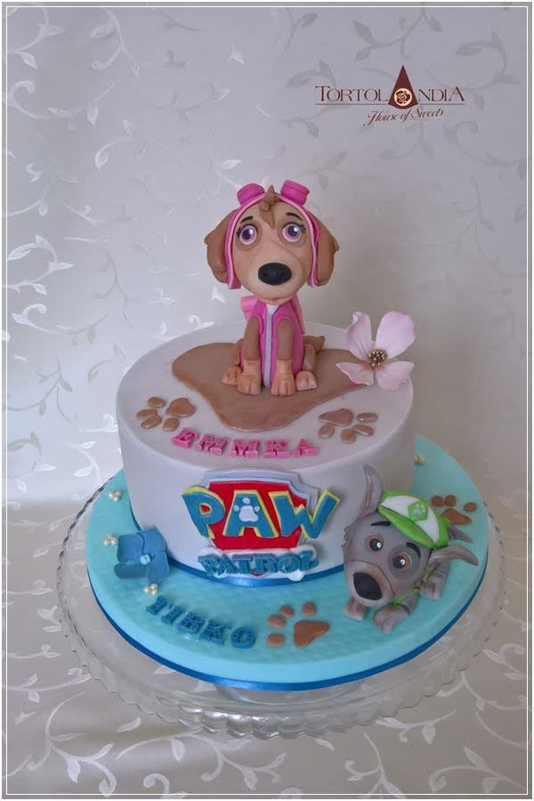 sky  rocky paw patrol  paw patrol cake cartoon cake