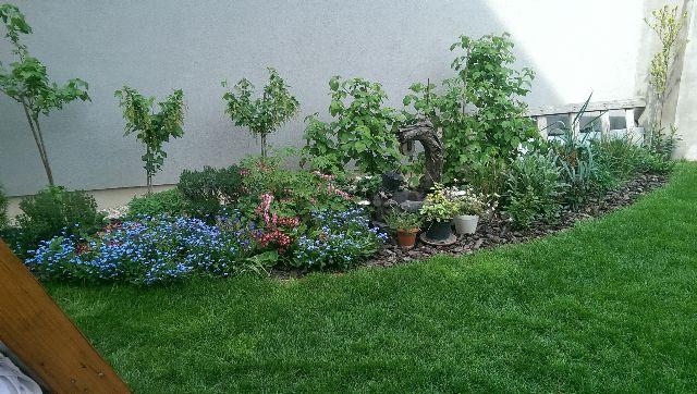 Dobrý den,posielam Vám fotografie nášho pozemku,ktorý sme si úplne sami navrhli a vysadili kvety,dokonca aj hupačka aj zamkova dlažba je vytvorena mojim manželom.