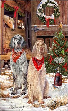 English Setter Christmas Cards Are 8 1 2 X 5 1 2 And Come In