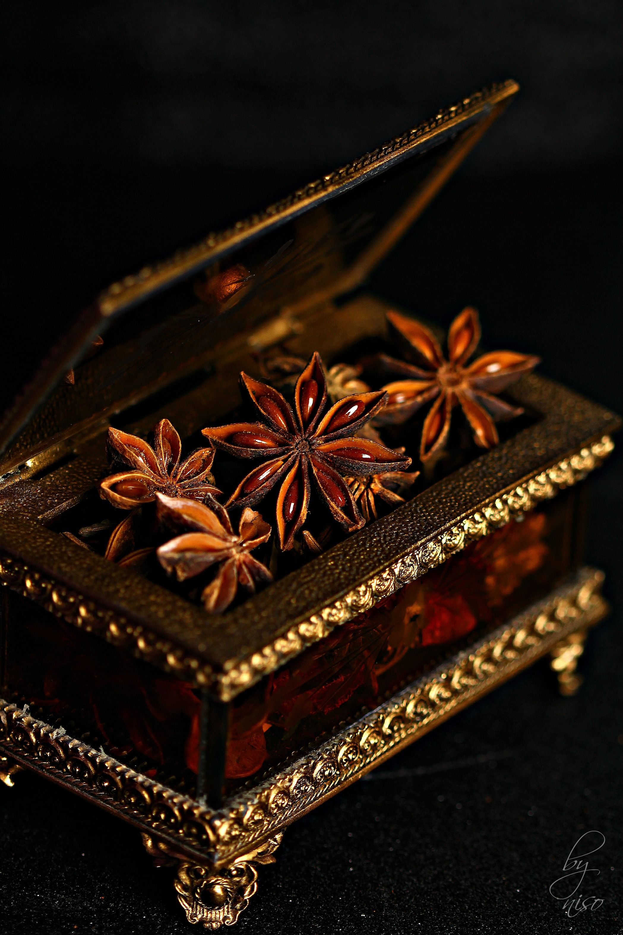 Star Anise نجمه اليانسون Star Anise Food Photography Styling Food Styling