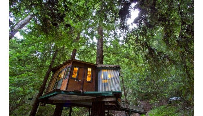 This Tiny Cabin In The Redwoods Is The Perfect Getaway For: Redwood Treehouse, A Vacation Rental In California.