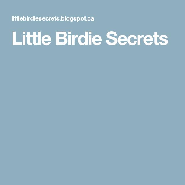 Little Birdie Secrets