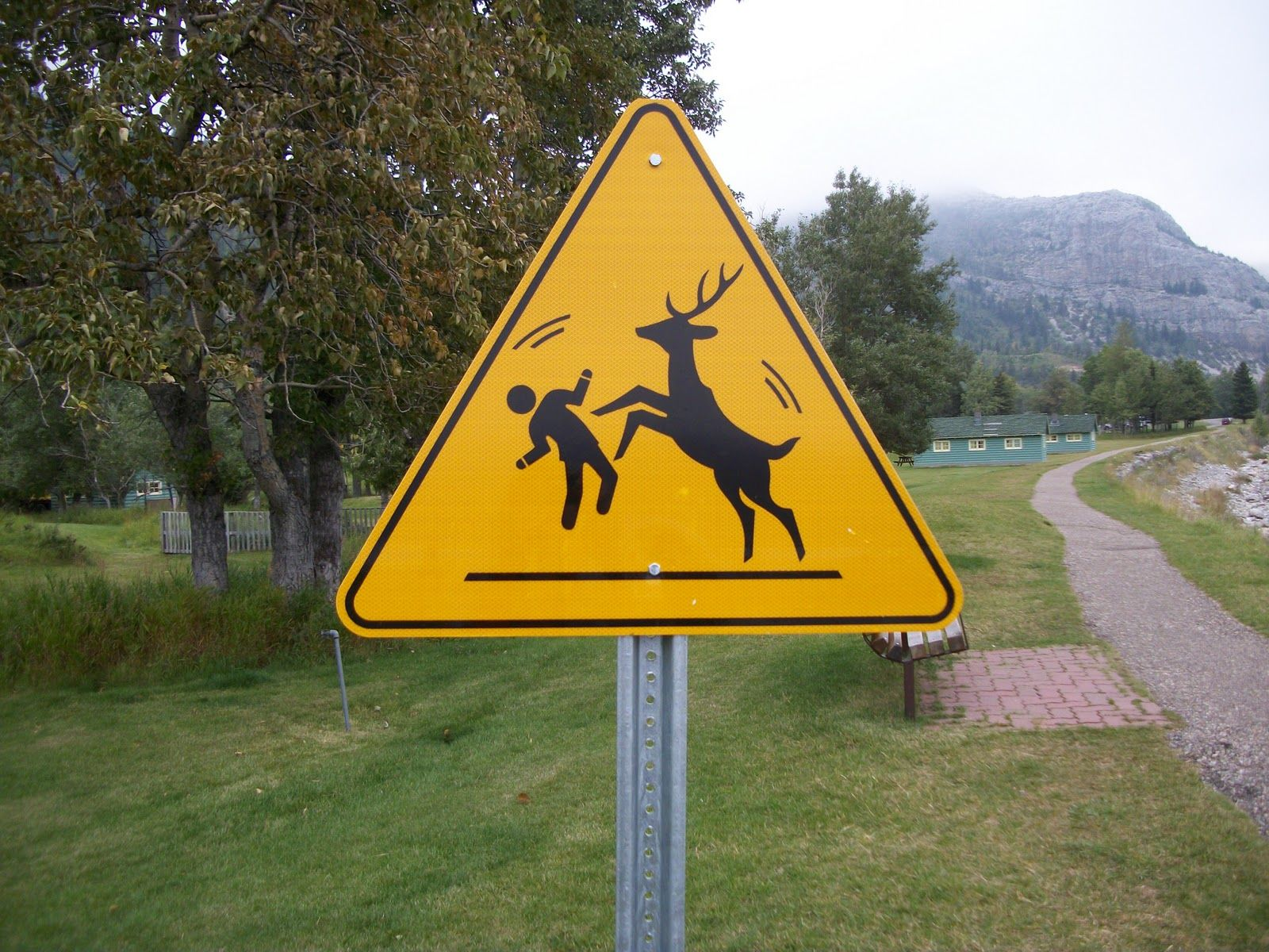 Funny Signs And Symbols Signs We Love Pinterest Deer Funny