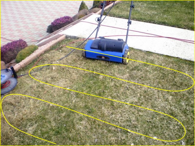 la bonne technique pour une pelouse bien scarifi e quand scarifier le gazon ou la pelouse. Black Bedroom Furniture Sets. Home Design Ideas