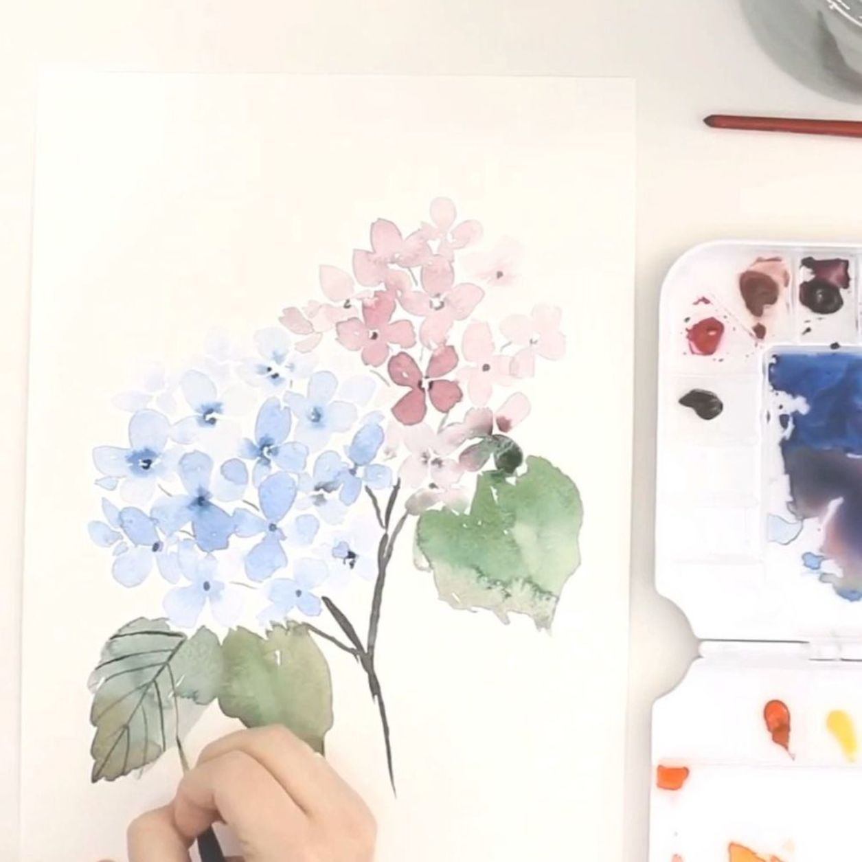 Learn How To Paint A Loose Watercolor Hydrangea On The Snowberry