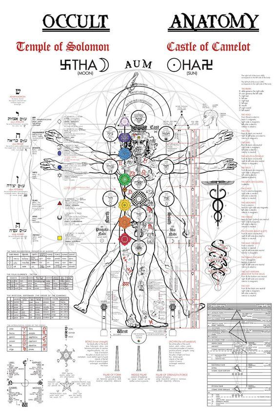 Photo of Occult Anatomy – Large Occult Poster (24×36), Occult Illustration, Kabbalah, Occult Art, Art Print, Occult Print, Gothic, Home Decor