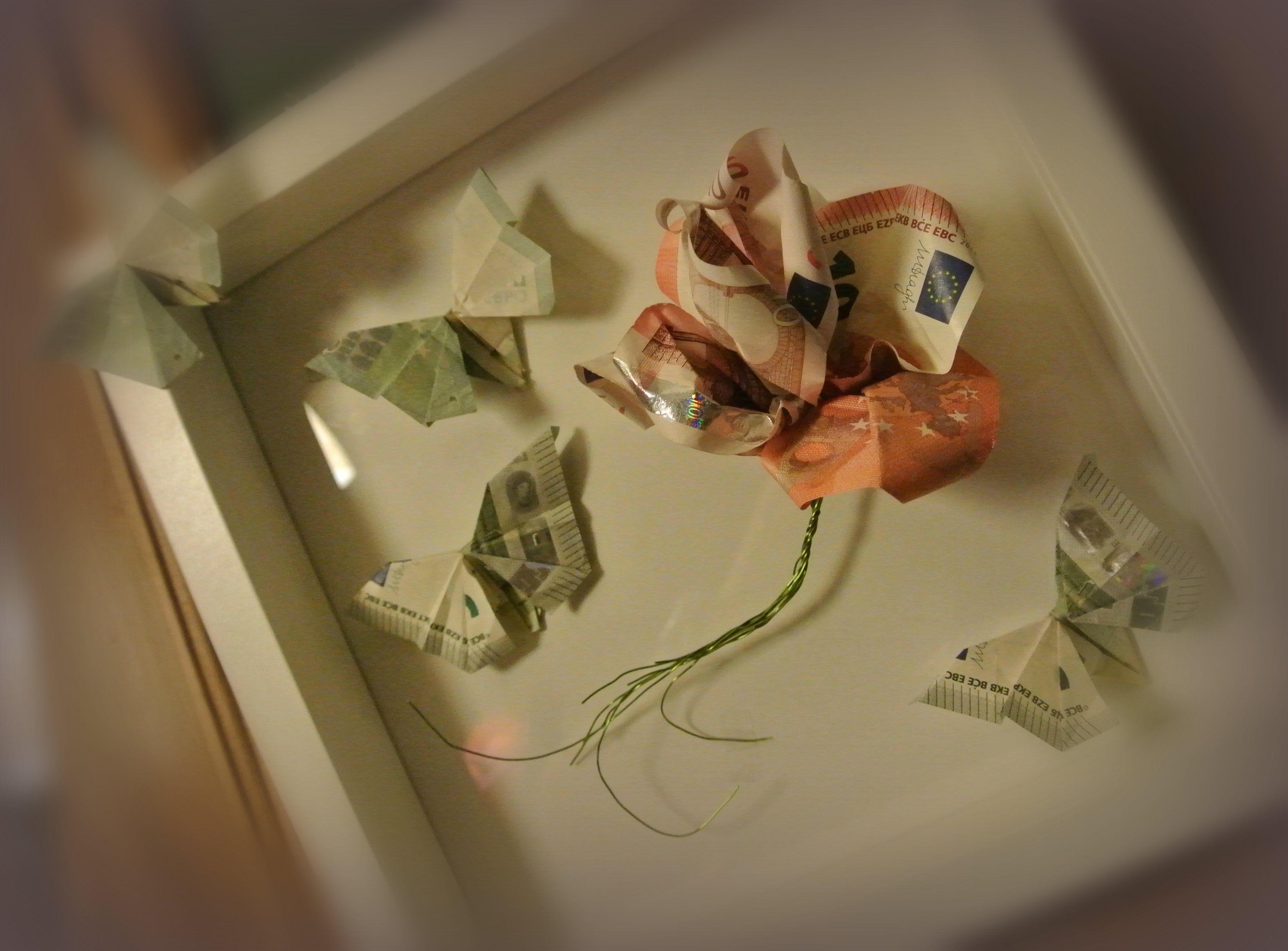 Waardevolle bloem en vlinders in een houten kader (geld ... - photo#7