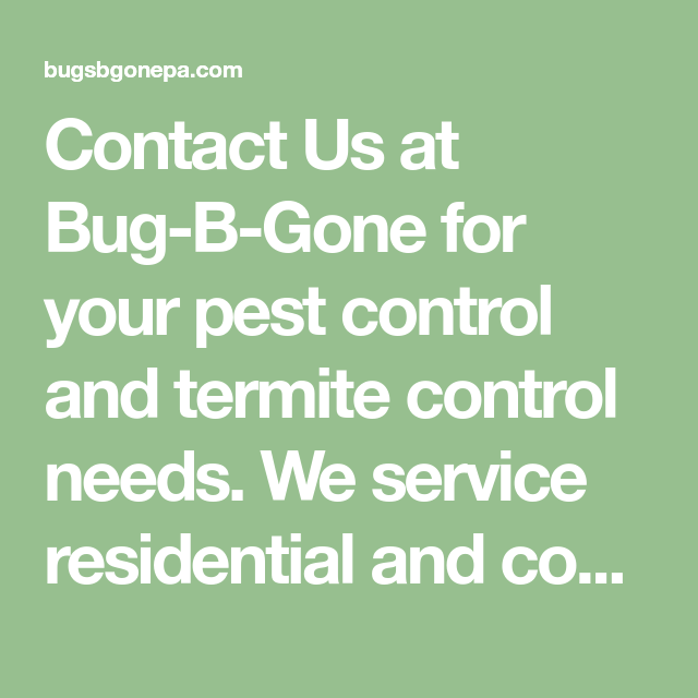Contact Us At Bugs B Gone Termite Control Pest Control Termites
