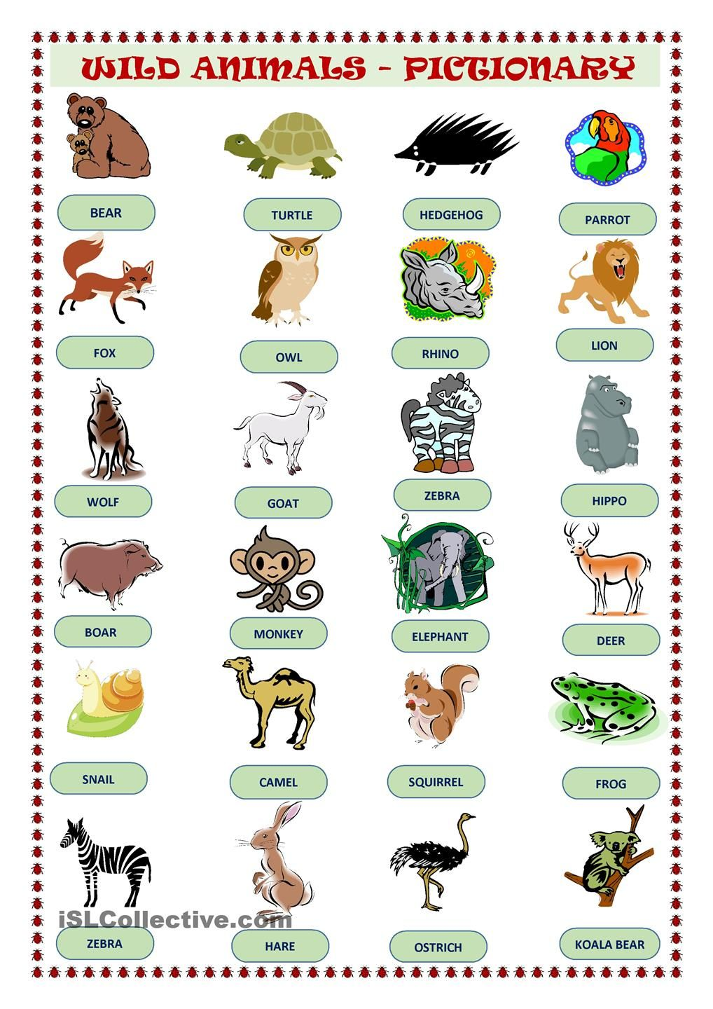 Wild Animals Pictionary | Animals and their homes, Animals wild, Pet signs