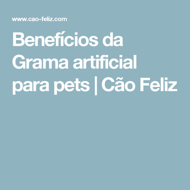 Benefícios da Grama artificial para pets   Cão Feliz