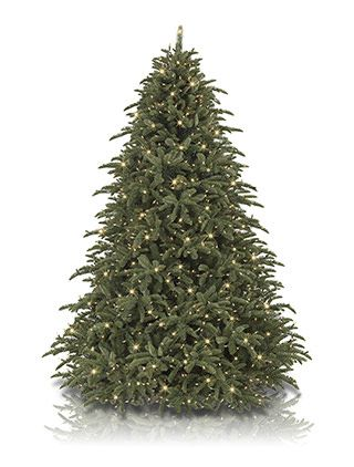 Shasta Fir Artificial Christmas Tree From Balsam Hill Thanks Lexi 6 1 2 With Clear Lights