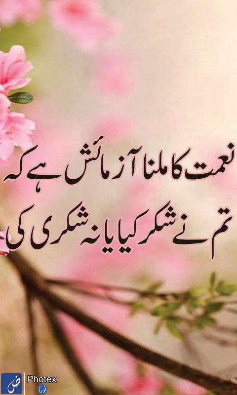 Design Urdu Poetry Urdu Sad Poetry Urdu Shayari Urdu Sms Urdu ...